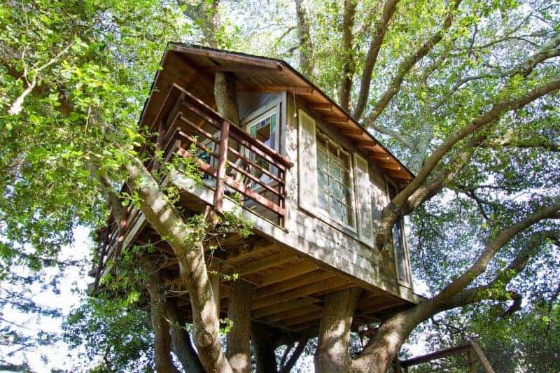 Five Reasons Why You Should Stay In A Treehouse